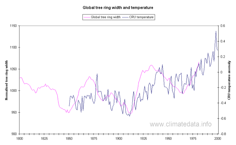 Data From Tree Rings To Determine Historic Weather Patterns